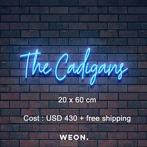 Custom Neon Sign (  Madeline Maestri )