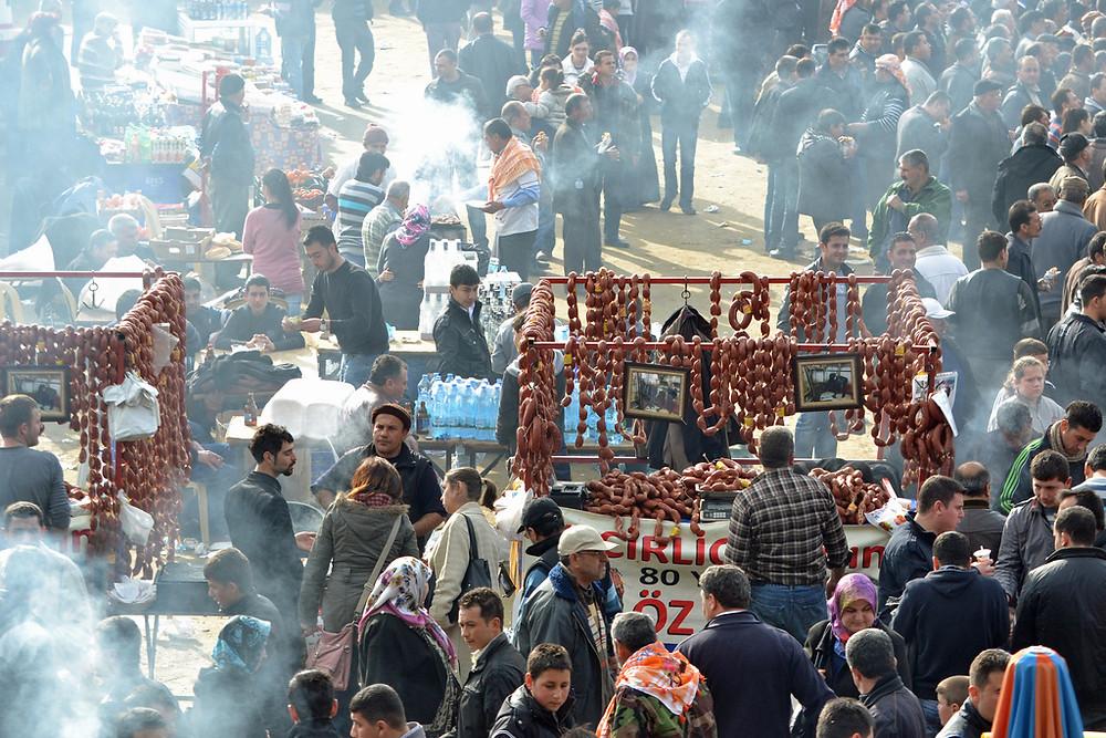 Festival Atmosphere - Camel Wrestling, Turkey
