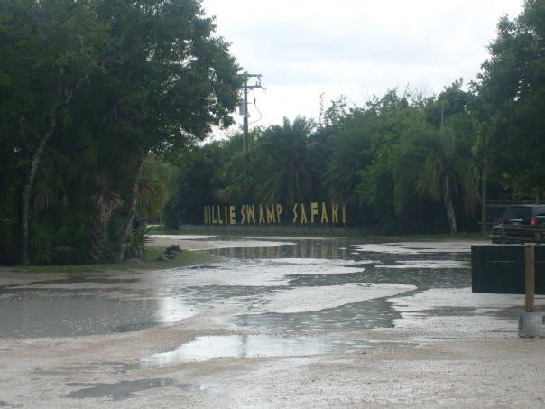 The Billie Swamp Safari