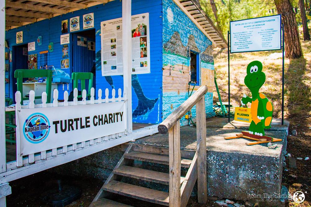 Captain June Turtle Foundation