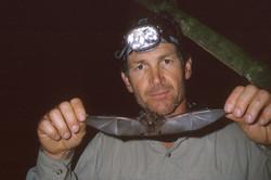 Collecting bats, Tambopata River