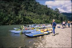Rafts on Tambopata