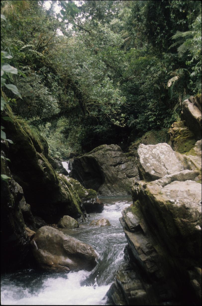 Upper Heath headwaters