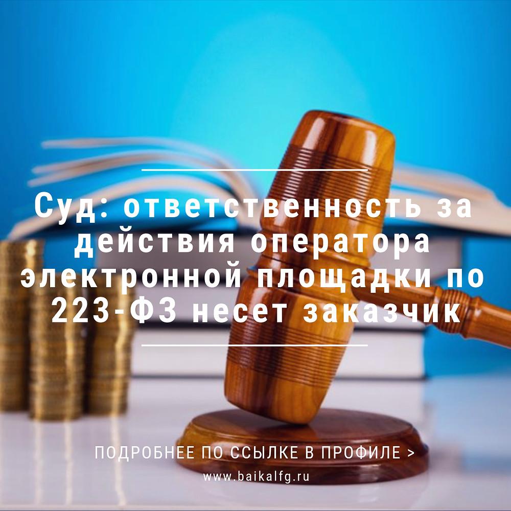 Суд: ответственность за действия оператора электронной площадки по 223-ФЗ несет заказчик