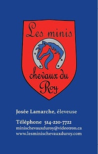 Carte affaire minis chevaux (002).jpg