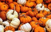 autumn-fall-gourds.jpg