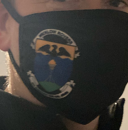 Wicklow Rovers Face Mask