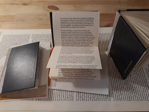 Que le mystère des livres • Dimitri Vazemsky