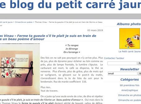 Thomas Vinau lu par Sabine Faulmeyer (Le Petit Carré jaune)