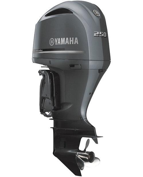 YAMAHA F250DETX
