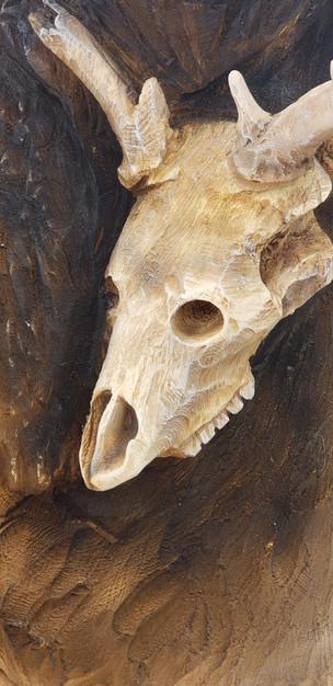 Bench Deer Skull