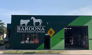 Baroona.jpg