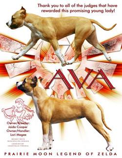 Ava ad may 2016