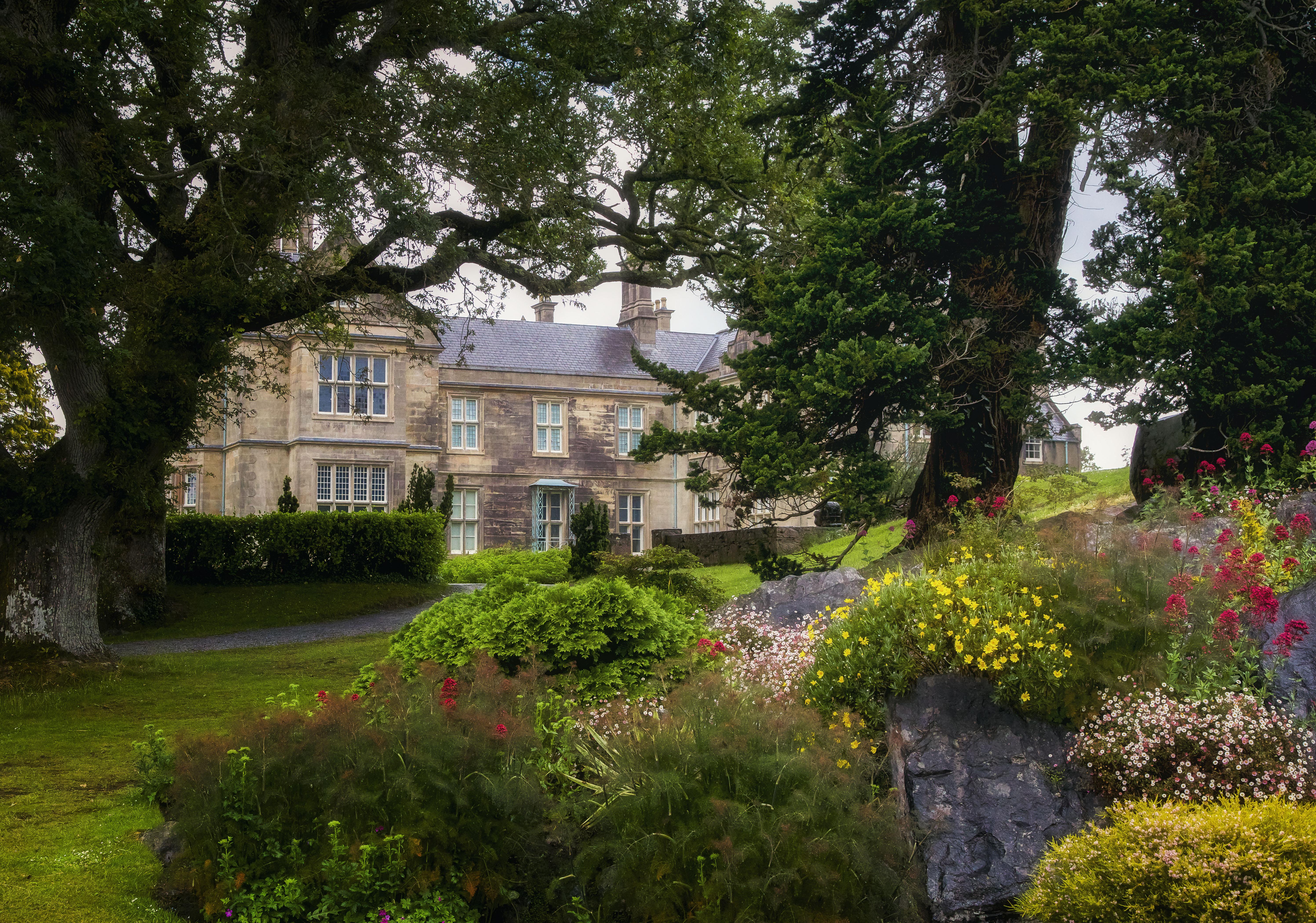 Muckross Garden A