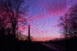 Vietnam Veterans Memorial 2