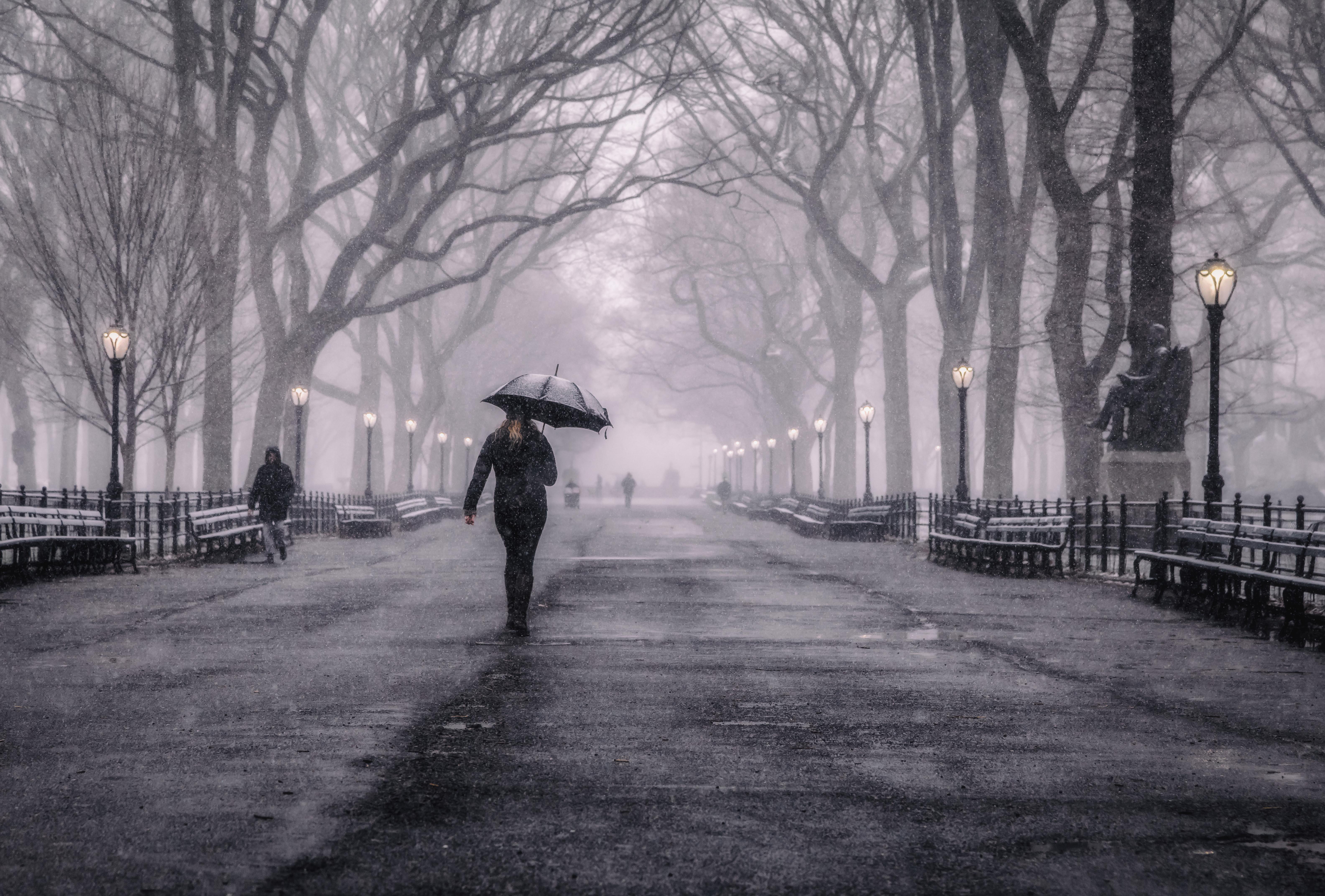Central Park Snow 4 A
