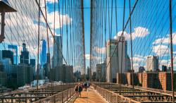 The web that is the Brooklyn Bridge A