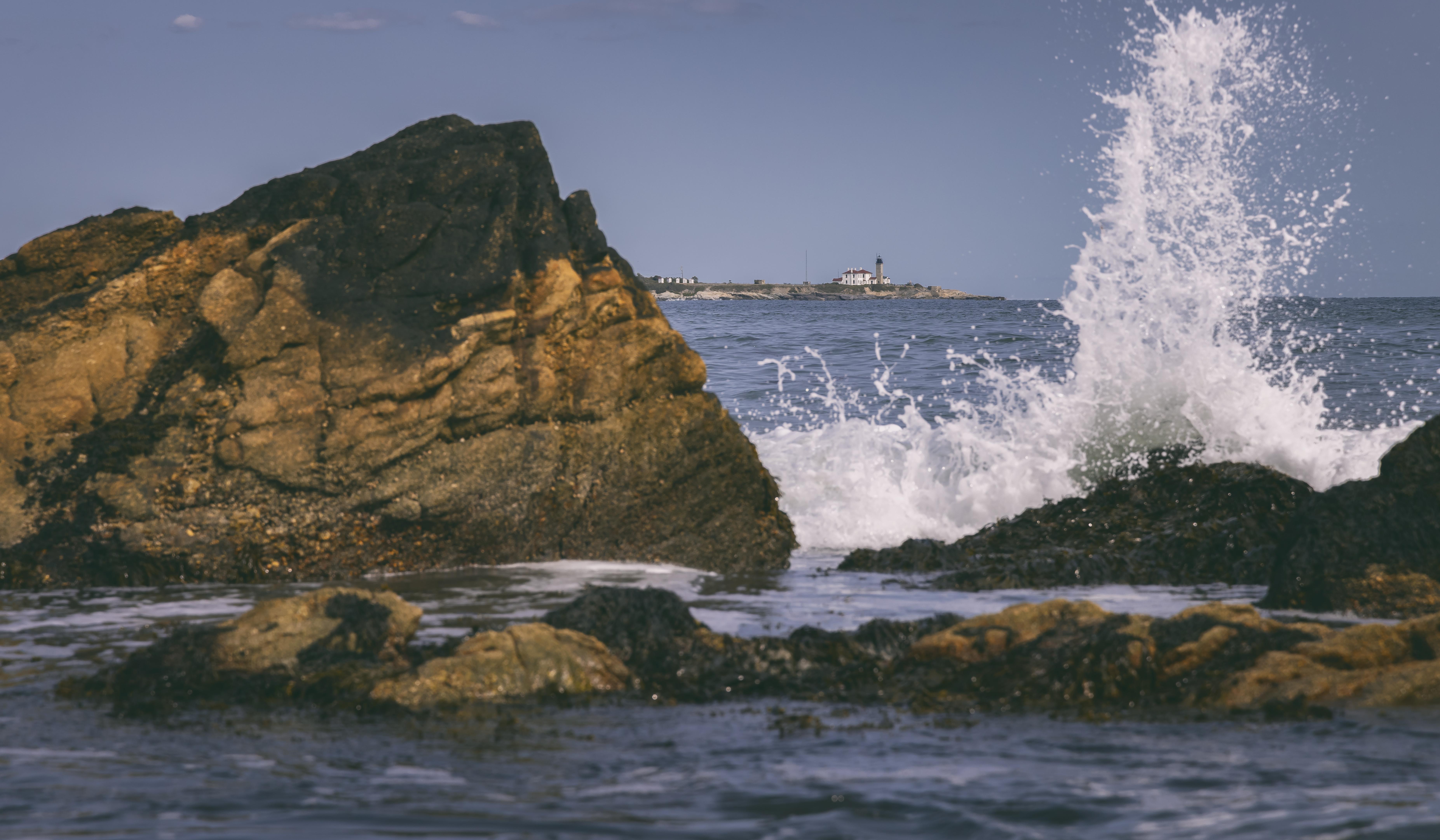 Whale Rock A