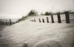 More dunes 3A2D F