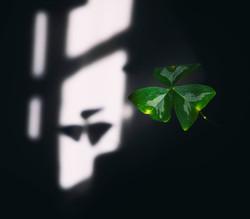 Casting shadows A