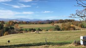 Vue depuis la ferme.