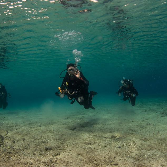 Underwater Trio