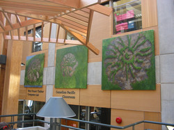 Installation at UBC Forestry