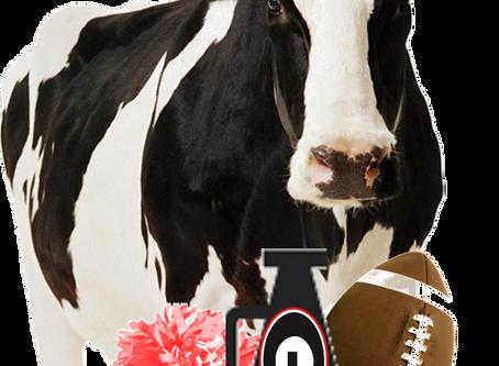 Fall = Football (Gooooo Dawgs!)