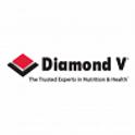 Platinum Diamond V.png