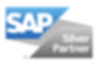 logo_sap_silver_partner.png