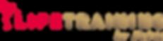 Logo Lifetraining by Fabio