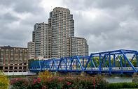 blue bridge in Grand Rapids Michigan wit