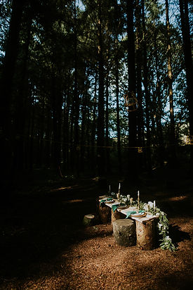 Rustic table setting in the woods.jpg