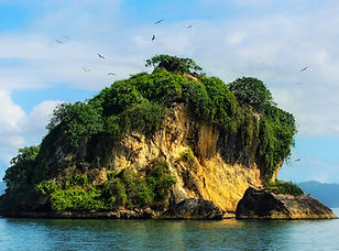 Dominican_Republic_Los_Haitises_birds_is
