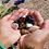 Thumbnail: 12 Piece Crystal Tumble Stone Mystery Bundle
