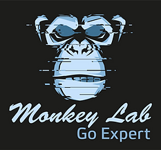 Monkey Lab go expert.png