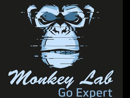 Go Expert