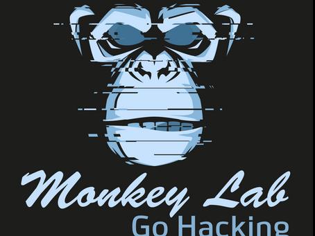 Go Hacking