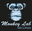 Monkey Lab go linux.png
