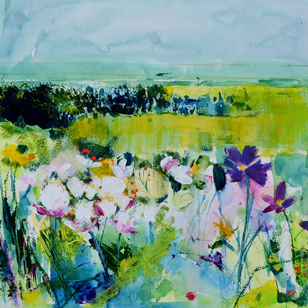 Meadow and beyond