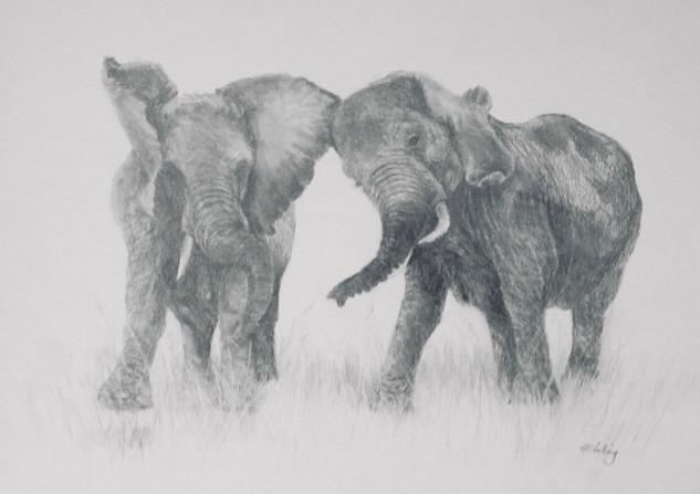 Gloria Shilling- Elephant Jive