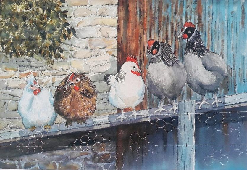 Barry Sullivan-Pecking Order-Watercolour
