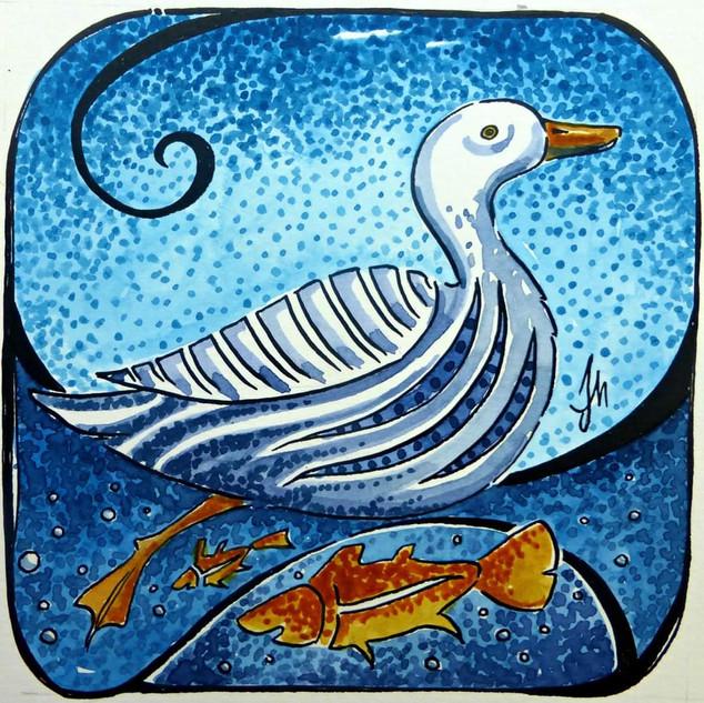 Judit Matthews- Swim for all