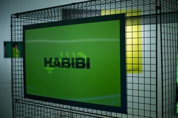 habibi holopraphic sign