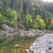 Fundy Trail 2020