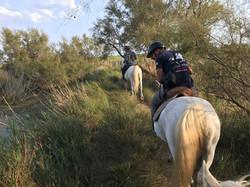 promenade à cheval pont de gau