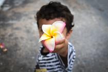 The Jamaican Flower. PRISMA Photography Studio