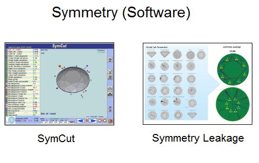 SYMMETRY LEAKAGE polish software