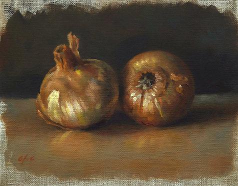 Oignons, JC Gondouin