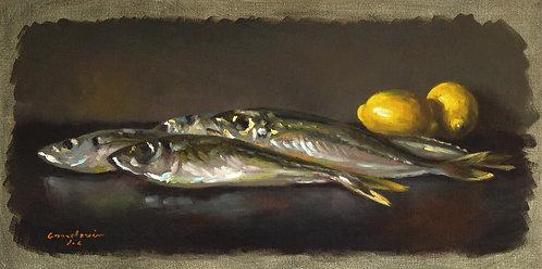 Les poissons, JC Gondouin